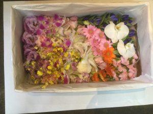 満を避けるため、直葬が増えております、その時の棺の中に入れる花たちです。